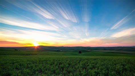 green grass field  sunrise photo hd wallpaper