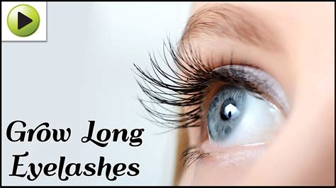 how to grow eyelashes naturally 3345 on go drama