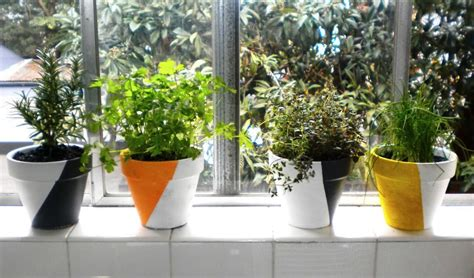 Indoor Windowsill Herb Garden indoor windowsill herb garden garden design ideas