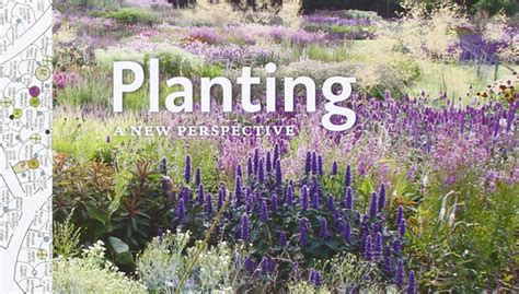 Planting A New Perspective shft planting a new perspective by piet oudolf noel