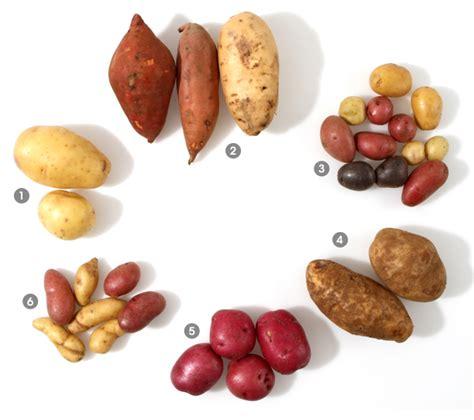 visual potato guide epicurious epicurious