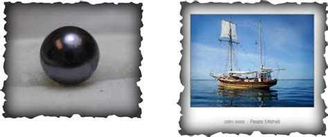 the pearl book four the seven books silverthorn s the black pearl website home