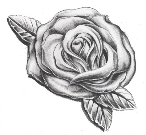 shaded rose tattoo designs shading by willemxsm on deviantart