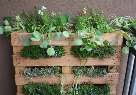 Vertical Garden Pallet 12 Fantastic Vertical Gardens Made With Palletsdiy Pallet