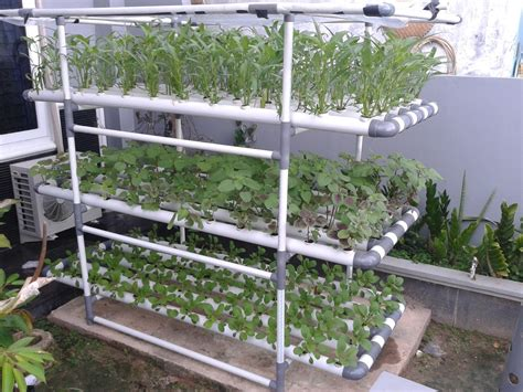 Small Home Hydroponic Systems How To Make Easy Hydroponics At Home And Farmer