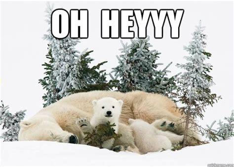 Heyyy Meme - oh heyyy baby polar bear wave quickmeme