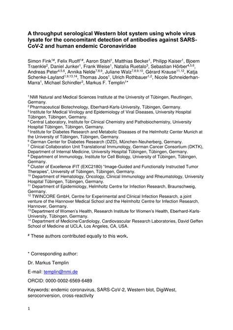 (PDF) A throughput serological Western blot system using