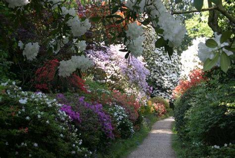 leonardslee garden  spring page