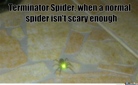 Cute Spider Memes - cute spider by strule meme center