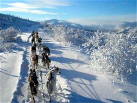 sledding canada sledding holidays husky safaris world s best responsible ecotourism holidays