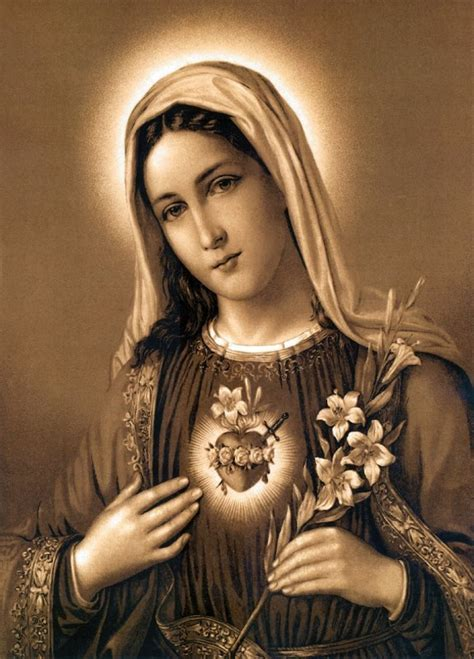 immaculate heart of mary conscientious catholic immaculate heart of mary part 2