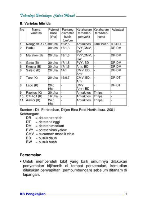 Bibit Cabai Lado teknologibudidayacabai