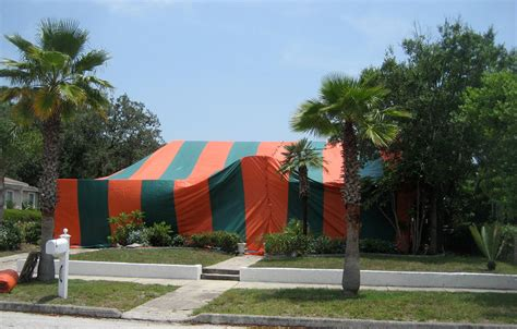 thinking  diy fumigation  bed bugs stop