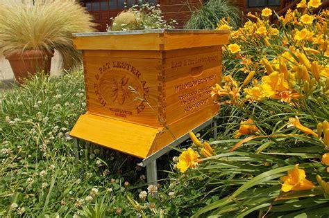 pesticides effect on honey bees truekeyword com