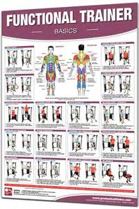 Weight Bench Set - productive fitness 24 x 36 laminated fitness poster wall chart functional trainer