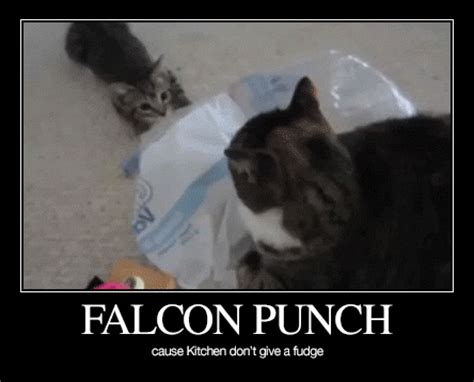 Falcon Punch Meme - ctfxc daily