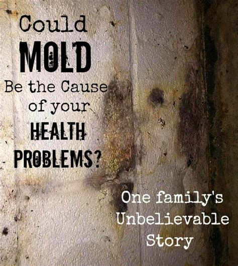 mold and the poison black mold symptoms could mold be your problem one family s story