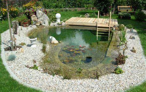 kosten für garten anlegen pflanzen f 252 r schwimmteiche gartenteiche teichpflanzen
