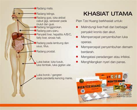 Obat Pien Tze Huang pien tze huang obat tradisional tiongkok untuk segala penyakit