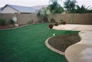 arizona tropical landscape design with sod palm trees