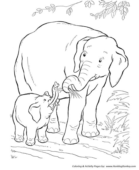 coloring pages animals and their babies baby animal pictures wallpaper clipart images free