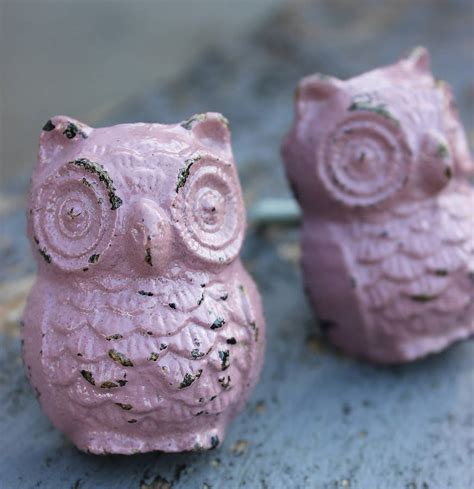 calamine owl door knob by the forest co