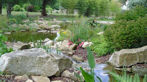 Pour Bassin De Jardin by Bassin De Jardin Quelle Taille Bassin De Jardin