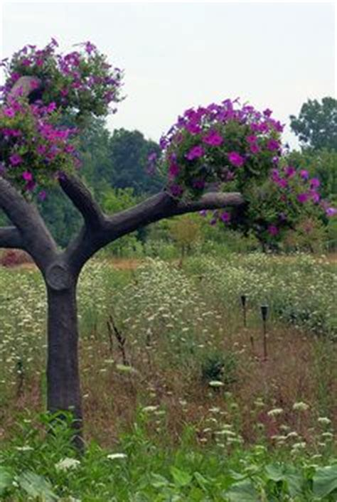 images  petunia trees  pinterest tree