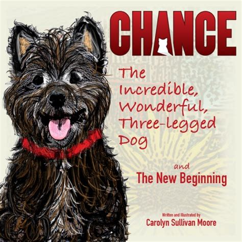 steamteam 5 the beginning books chance the wonderful three legged and
