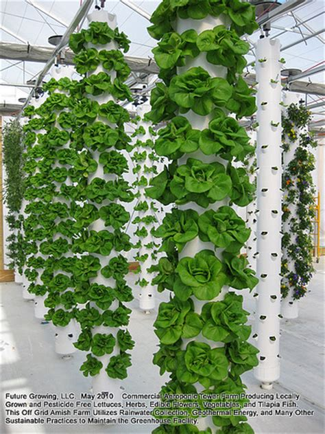 Vertical Hydroponic Gardening Systems Photo