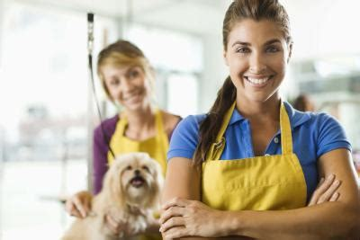 how much do you tip a groomer what are the work conditions for groomers ehow