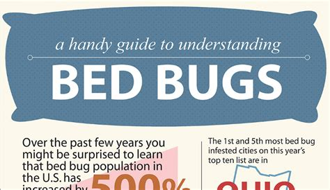 difference between bed bug bites and flea bites difference between flea bites and bed bug bites hrfnd