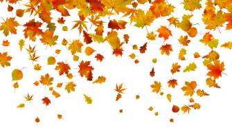 Transparent fall leaves png clipart image