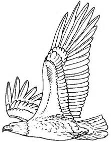 bald eagle coloring page of the jungle printable pictures of bald eagle