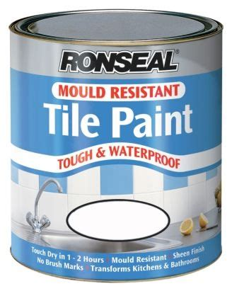 mold and mildew resistant bathroom paint bathroom paint mould resistant 28 images mold
