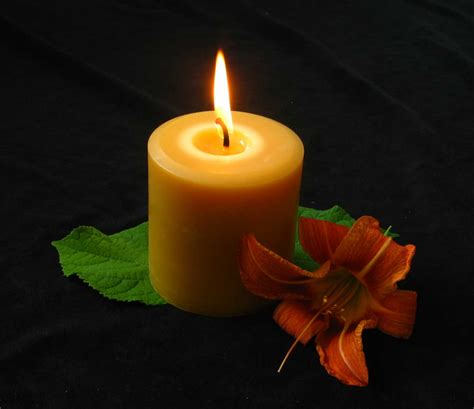 a candela 100 beeswax candles honey candles