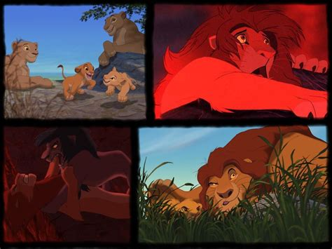 lion king lion king wallpaper 541259 fanpop