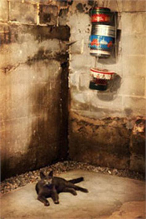 leaky basement walls in ohio d basement walls
