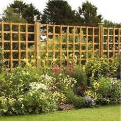 Large Wooden Trellis 6 X 4 Large Square Trellis Panel Fence Pressure Treated
