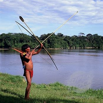 imagenes del estado amazonas venezuela silvestre y natural el estado de amazonas