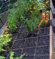 Garden Plot Ideas Community Garden Ideas On Pinterest Gardening Farms And Plants