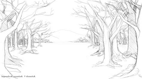 rainforest background coloring page forest background sketch www pixshark com images