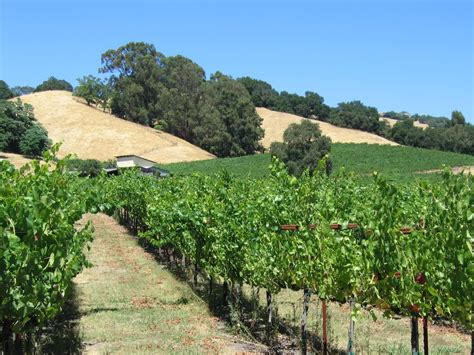 Detox Sonoma County by Invest In Beautiful Sonoma County With Socotra Capital S