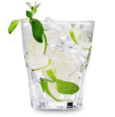 vodka tonic 100 vodka tonic lemon set of 2 fishbowl copa gin