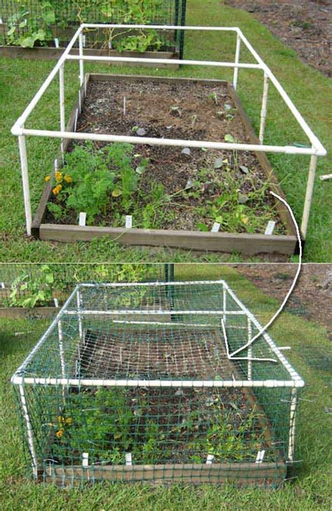 Pvc Garden by Top 20 Low Cost Diy Gardening Projects Made With Pvc Pipes Bio Prepper
