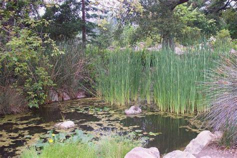 Sb Botanic Garden Santa Barbara Botanic Garden Letsgoseeit