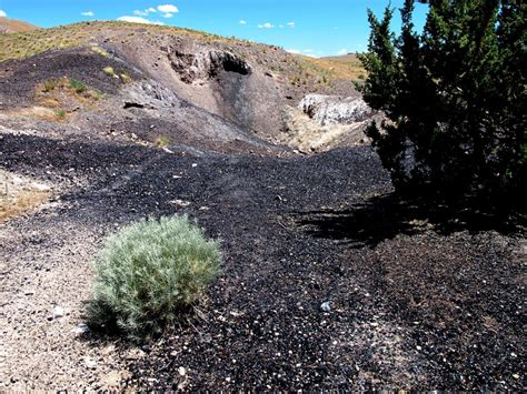 black rock the rockhounder obsidian in the black rock desert