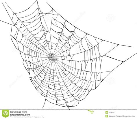 drawing web page spider web illustration stock illustration illustration