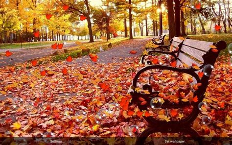 Fall Live Wallpaper Android by Free Live Fall Wallpapers Sf Wallpaper