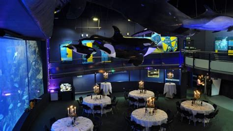 function rooms plymouth national marine aquarium exeter and east